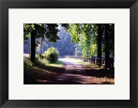 Framed Path Into the Woods, Burgandy, France 99 Print