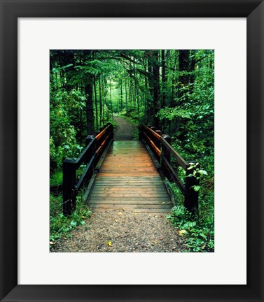 Framed Wooden Bridge, Sundell, Michigan 90 Print