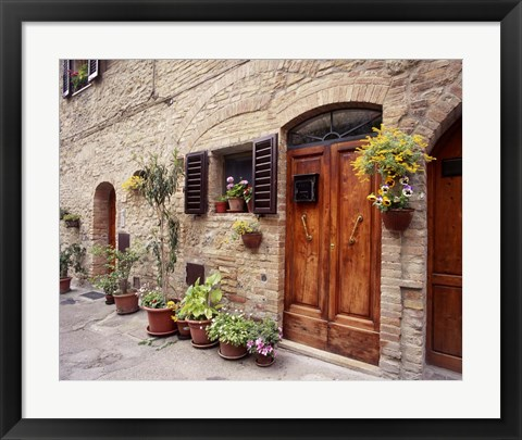 Framed Flowers On The Wall, Tuscany, Italy 06 Print