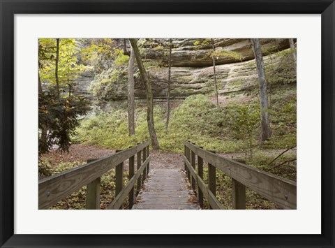 Framed Bridge In The Canyon Print