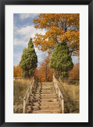 Framed Wooden Steps In Autumn, Marquette, Michigan 12 Print