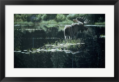 Framed Summer Pond Print