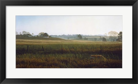 Framed Autumn Fields - Red Fox Print