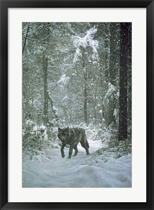 Framed Winter Encounter - Wolf Print