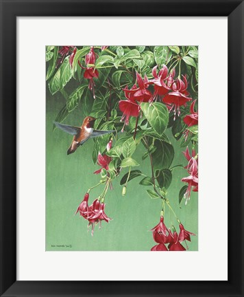 Framed Hanging Basket Print
