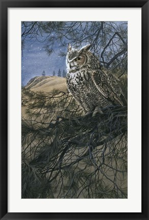 Framed Great Horned Owl 2 Print