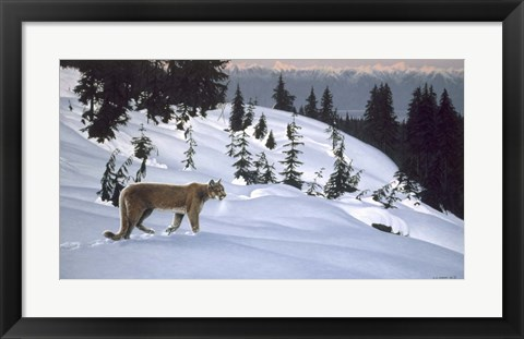 Framed Cougar In Snow Print