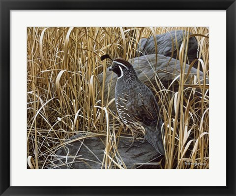 Framed Golden Grasses Print