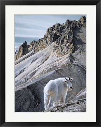 Framed Ramparts- Mountain Goats Print