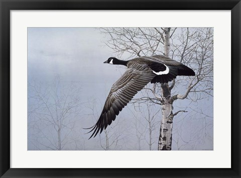 Framed Winter Flight Print