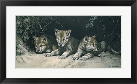 Framed Three Little Wolves Print