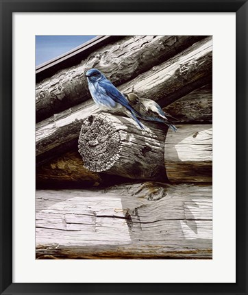 Framed Weathered Wood Print