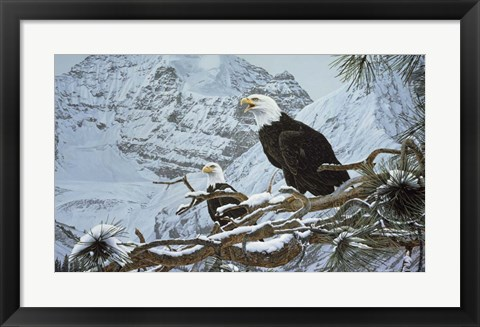Framed Eagles In The Pine Print