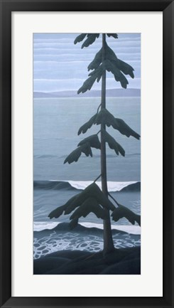 Framed Lone Fir Print