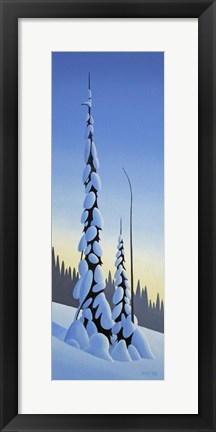 Framed Winter Spruce Print