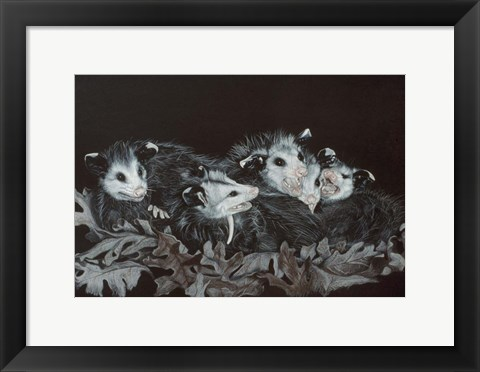 Framed Rodents Print
