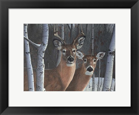 Framed Deer Magic Print