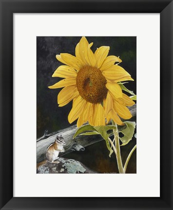 Framed Sunflower and Chipmunck Print
