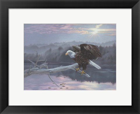 Framed Huron Eagle Print