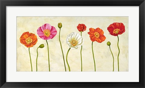 Framed Coquelicots Print