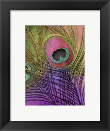 Framed Peacock Candy III Print
