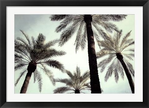 Framed Palm Two Print