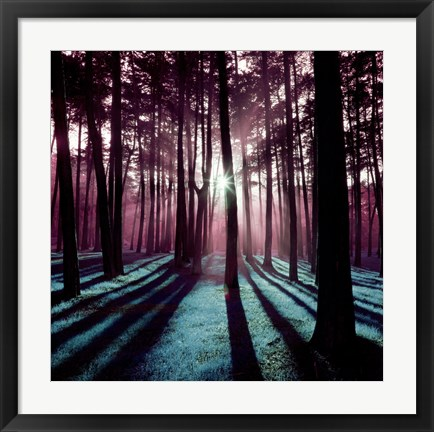 Framed Technicolor Trees 3 Print