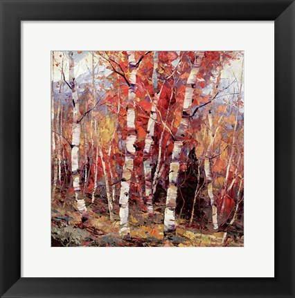 Framed Birch Colors 4 Print