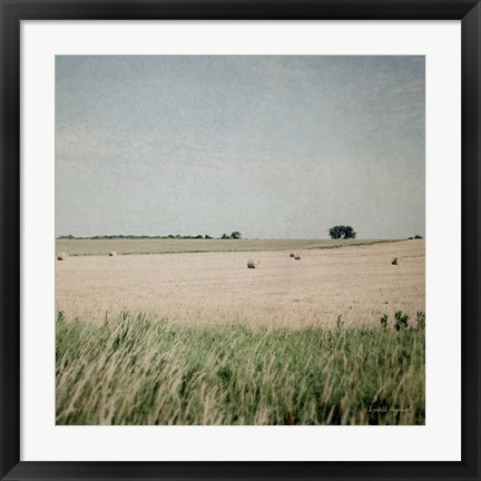 Framed Neutral Country II Print