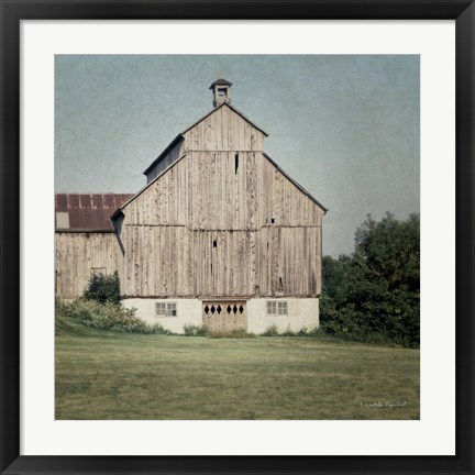 Framed Neutral Country IV Print