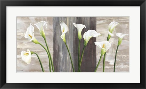 Framed Country Callas Print