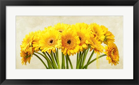 Framed Gerbera Abstraction Print