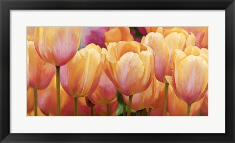 Framed Summer Tulips Print