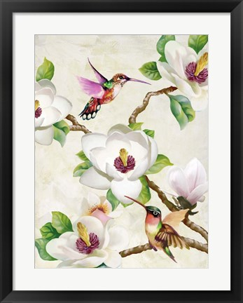Framed Magnolia and Humming Birds Print