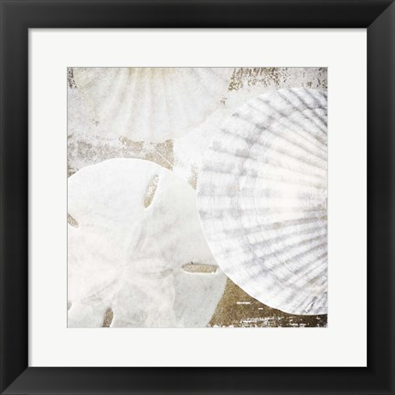 Framed White Shells II Print