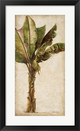 Framed Tropic Banana I Print