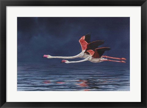 Framed Flying Flamingos Print