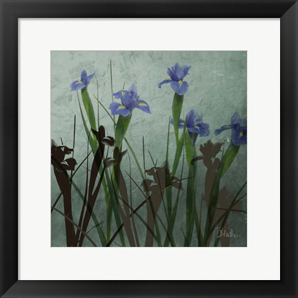 Framed Blue Irises I Print