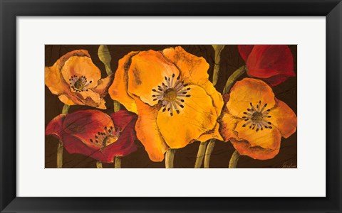 Framed Dazzling Poppies II (black background) Print