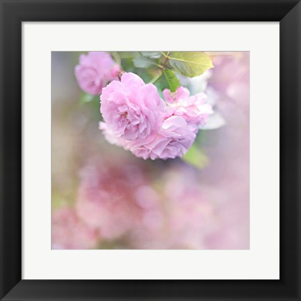 Framed Graceful Floral Print