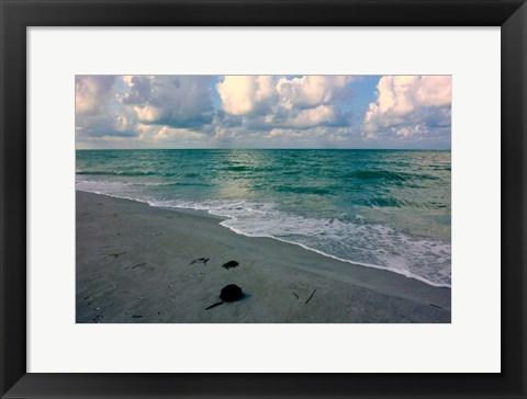 Framed Emerald Sea Print