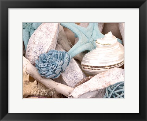 Framed Bundle of Shells II Print