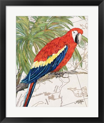 Framed Another Bird in Paradise I Print