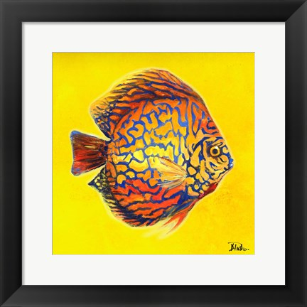 Framed Bright Aquatic Life I Print