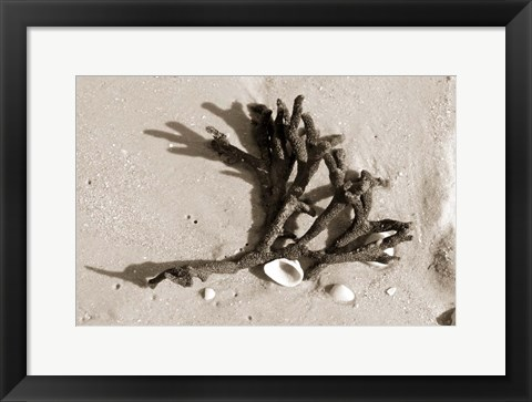 Framed Coral on Sand Print