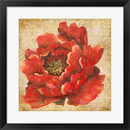 Framed Red Peony on Gold (without stem) Print