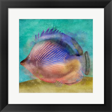 Framed Fish II Print