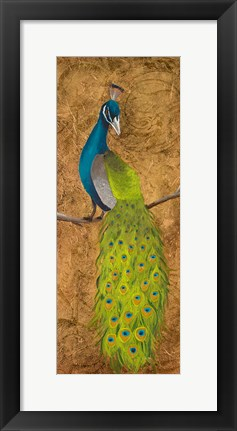 Framed Peacocks II Print