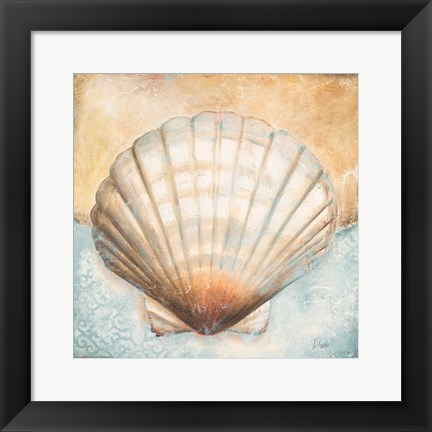 Framed Seashell Collection III Print