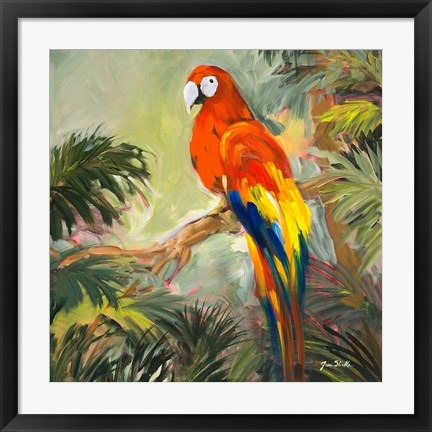 Framed Parrots at Bay I Print